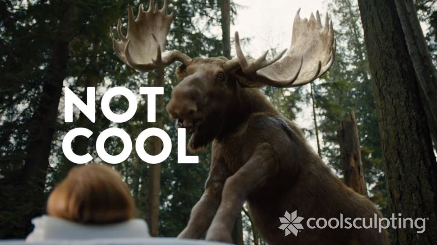 Moose Blog Image V2