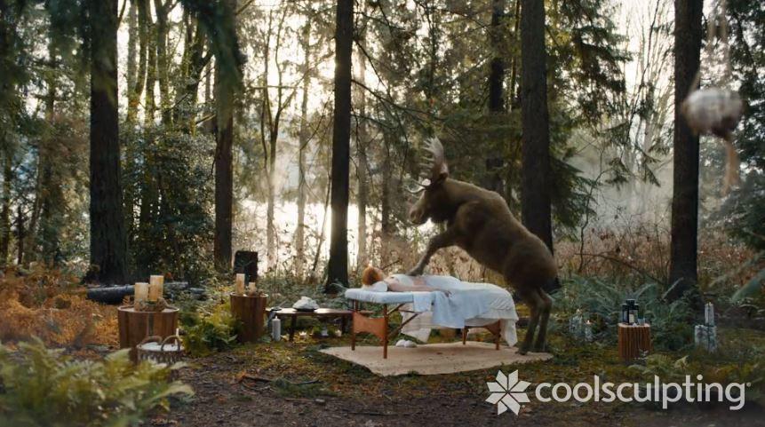 Moose Blog Image-1.jpg